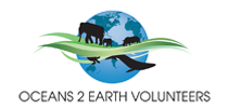oceans 2 earth foundation